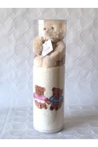 Coffret serviette brodé 2 ours + peluche